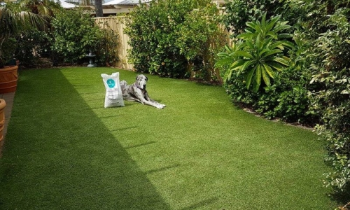 After artificial grass installation